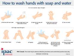 Clean Hands English